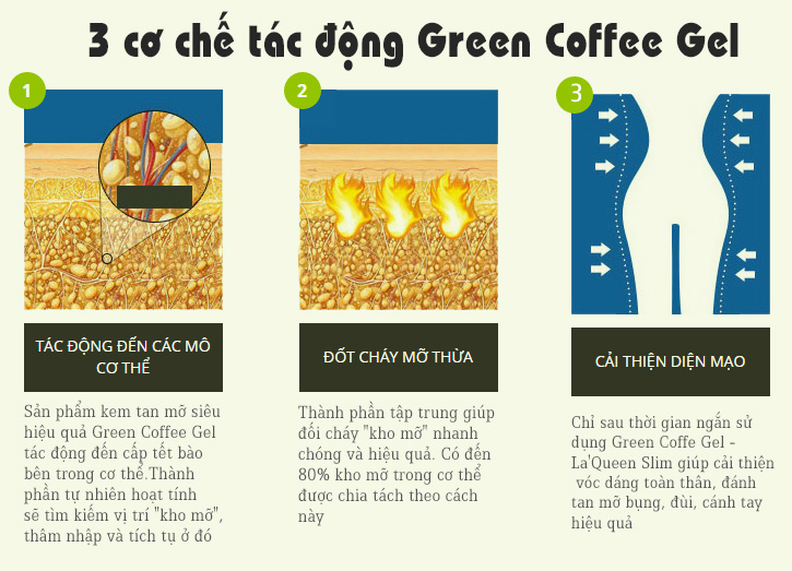 Green Coffee Gel 1